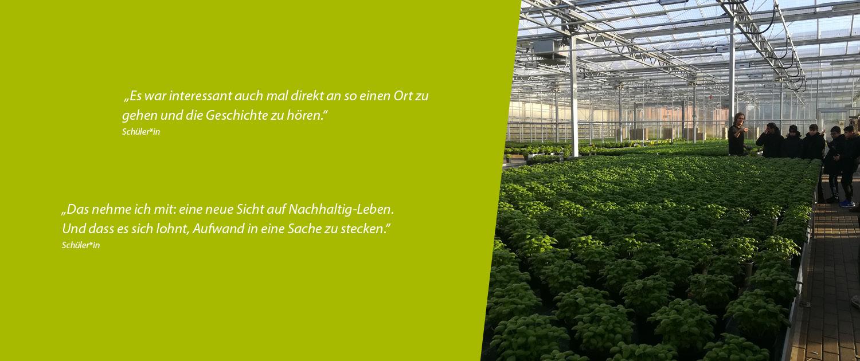 Nachgefragt Hoch Drei – Exkursion der Schüler*innen zu der ECF Farmsystems GmbH